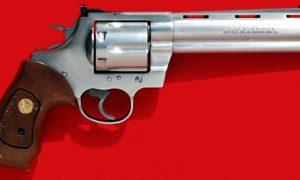 Revolver-Magnum.jpg