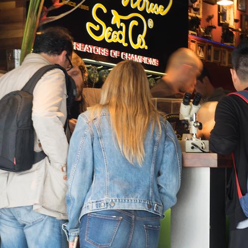 coffeeshop_Amsterdam_toeristC2A9CS.jpg