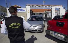 Vier jaar gevangenis voor directrice dierenopvangcentrum Parque Animal-Torremolinos [Panorama]
