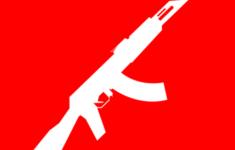 De rippartij in de kelderbox: Mano 'leefde met het pistool' [Misdaadjournalist]