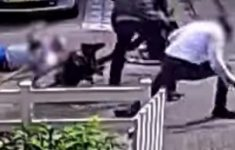 Politie toont beelden rip en schietpartij (VIDEO) [Crimesite]