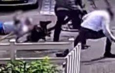 Politie houdt verdachte schietpartij Bijlmer aan [Crimesite]